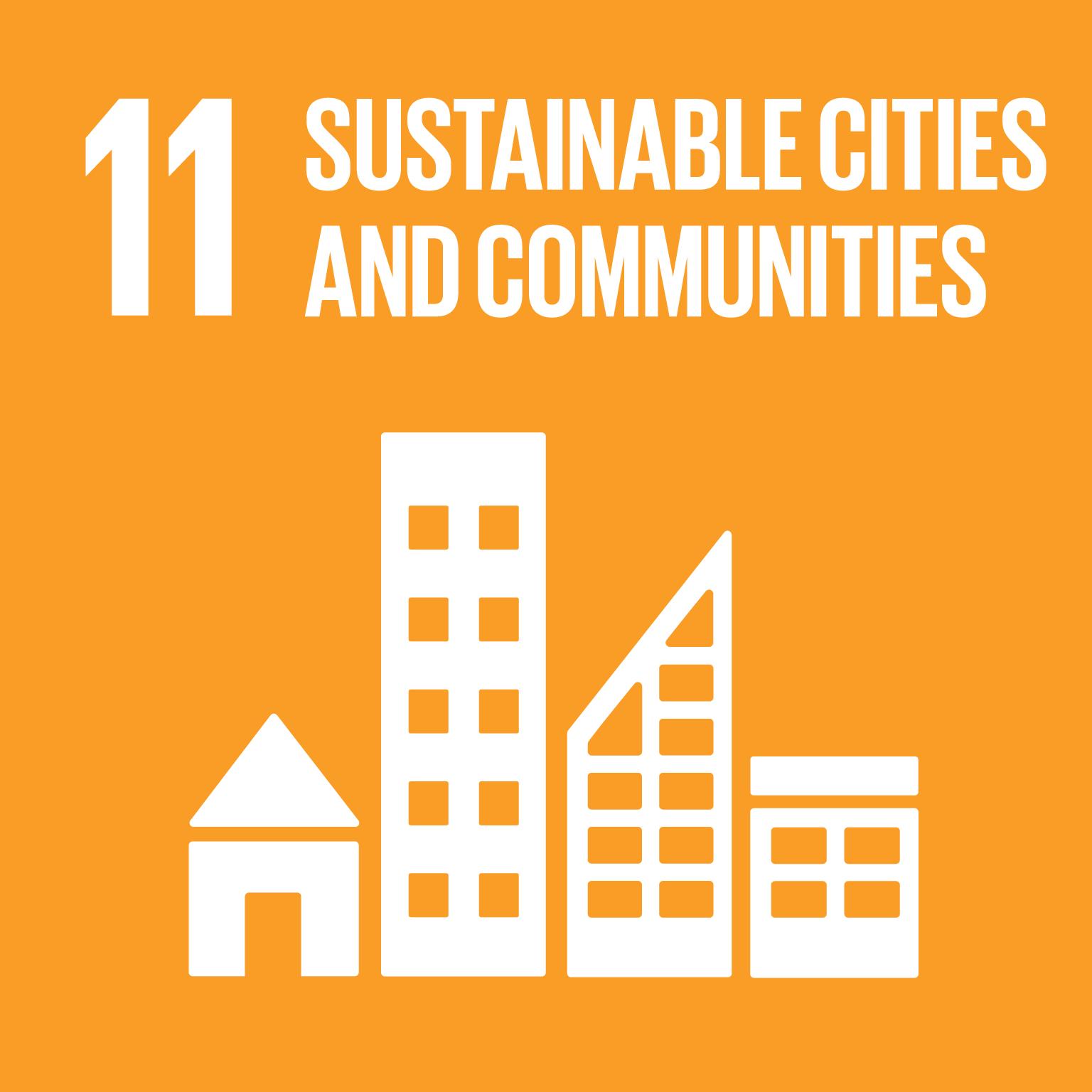 SDG11