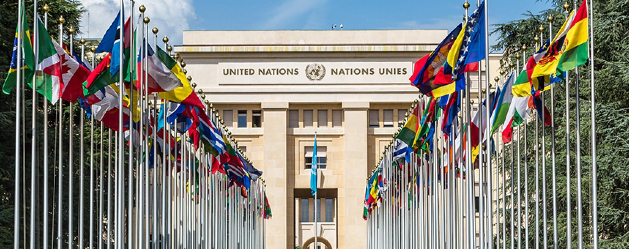 UN Training Programmes